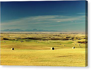 Bales Canvas Print - 10 10 10 Am On 10 10 10 by Todd Klassy