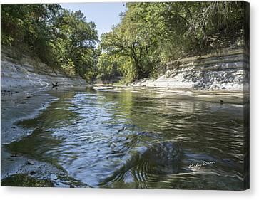 10 Mile Creek Canvas Print