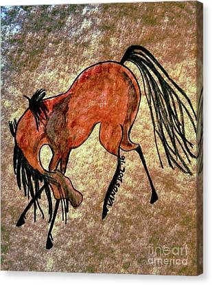 The Dancing Pony Canvas Print by Scott D Van Osdol