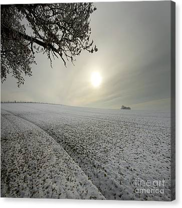 The Wintery Tales Canvas Print by Angel  Tarantella