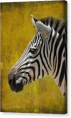 Crosswalk Canvas Print - Zebra by Heike Hultsch