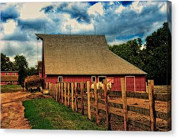 100 Years Canvas Print by Lyle  Huisken