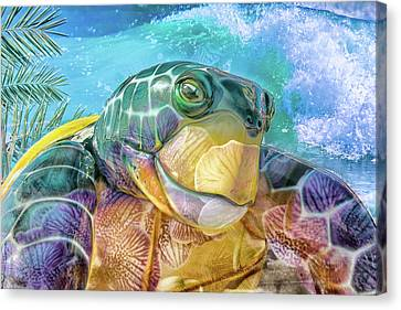 Smiling Canvas Print - 10730 Mr Tortoise by Pamela Williams