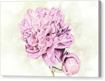 10861 Spring Peony Canvas Print