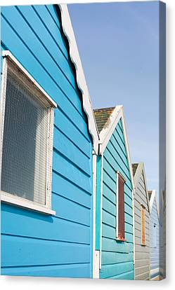 Beach Huts Canvas Print by Tom Gowanlock