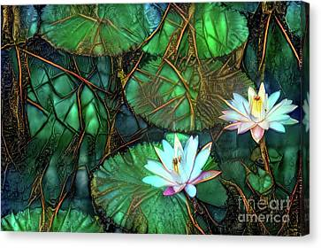 Lilies Canvas Print - Jeweled Water Lilies by Amy Cicconi