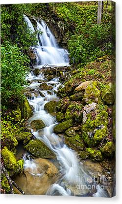 West Virginia Waterfall  Canvas Print by Thomas R Fletcher