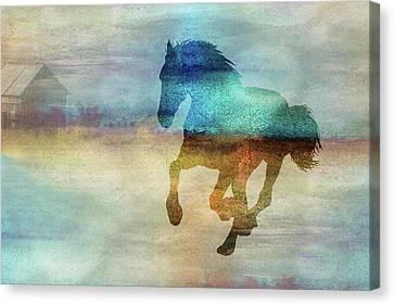 11008 Horse Canvas Print