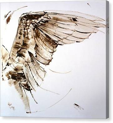 11.11 Wing Canvas Print by Bill Mather