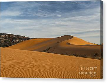 Coral Pink Sand Dunes Canvas Print by Yefim Bam