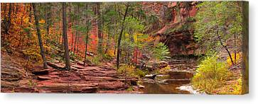 Autumn   Canvas Print by Mikes Nature
