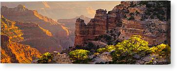 A Grand View Canvas Print by Mikes Nature