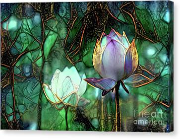 Flowers Canvas Print - Jeweled Water Lilies by Amy Cicconi
