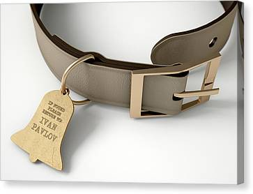 Black Tie Canvas Print - Leather Collar With Tag by Allan Swart