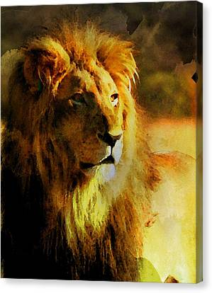 Panther Canvas Print - Lion by Anna J Davis