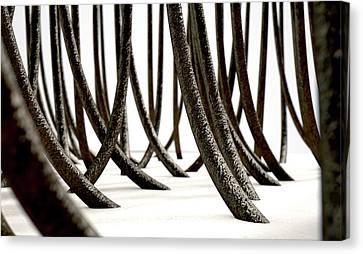 Microscopic Hair Fibers Canvas Print by Allan Swart
