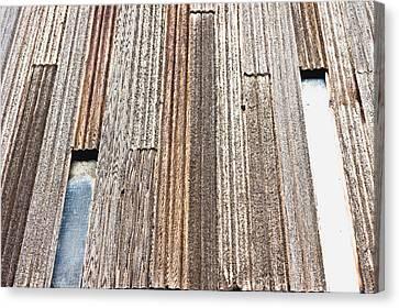 Wooden Panels Canvas Print by Tom Gowanlock