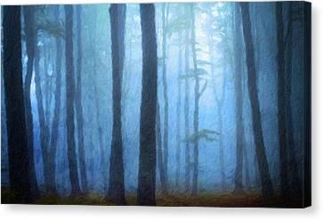 Landscape Pictures Nature Canvas Print by Margaret J Rocha