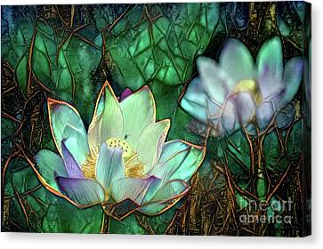 Iridescent Canvas Print - Jeweled Water Lilies by Amy Cicconi