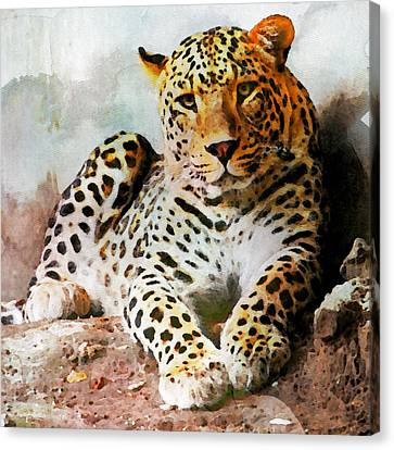 Panther Canvas Print - Leopard by Anna J Davis