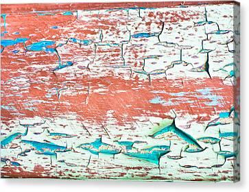 Peeling Paint Canvas Print by Tom Gowanlock