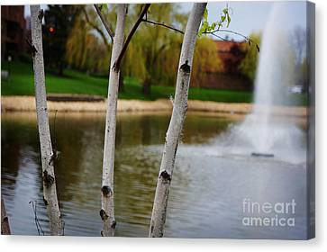 Spring Landscape Canvas Print by Celestial Images