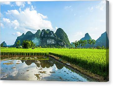 The Beautiful Karst Rural Scenery Canvas Print by Carl Ning