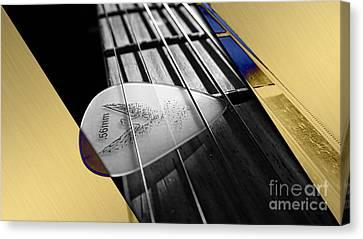 Acoustic Guitar Collection Canvas Print
