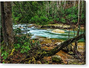 Canvas Print featuring the photograph Back Fork Of Elk River by Thomas R Fletcher