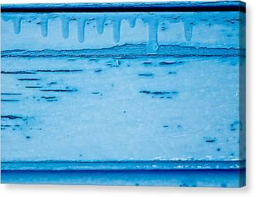 Blue Wood Canvas Print