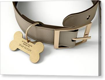 Leather Collar With Tag Canvas Print
