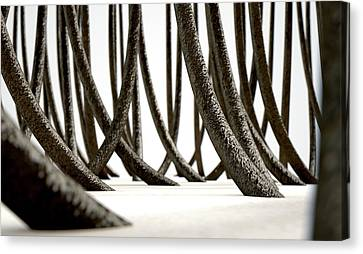 Component Canvas Print - Microscopic Hair Fibers by Allan Swart
