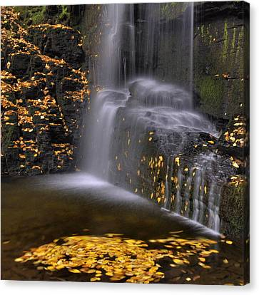 Waterfall Detail Canvas Print by Stephen  Vecchiotti