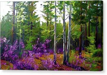 Nature Landscape Graphics Canvas Print by Edna Wallen