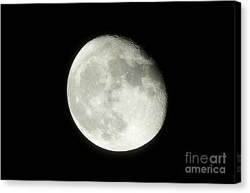 17 Day Old Waning Gibbous 95 Per Cent Visible Moon Canvas Print by Joe Fox