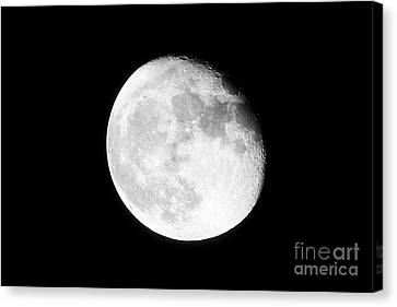 17 Day Old Waning Gibbous Grainy Visible Moon Canvas Print by Joe Fox