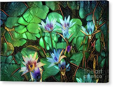 Water Lillies Canvas Print - Jeweled Water Lilies by Amy Cicconi