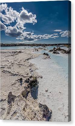 Silica Deposits In Water By The Canvas Print
