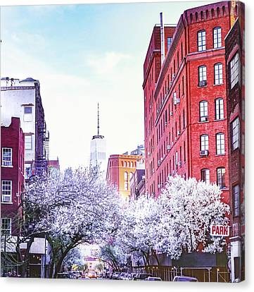 Tree Blossoms Canvas Print - New York City by Vivienne Gucwa