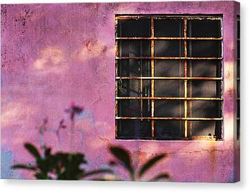 18 Rectangles  Canvas Print by Prakash Ghai