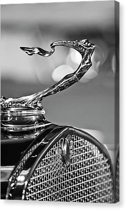 Mascots Canvas Print - 1930 Cadillac Roadster Hood Ornament 2 by Jill Reger