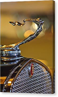 Mascots Canvas Print - 1930 Cadillac Roadster Hood Ornament by Jill Reger