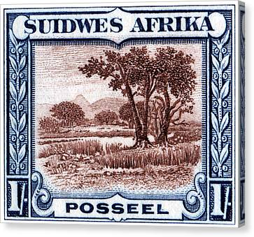 Canvas Print featuring the painting 1931 South West African Landscape Stamp by Historic Image