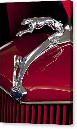 1936 Ford 68 Pickup Hood Ornament Canvas Print by Jill Reger