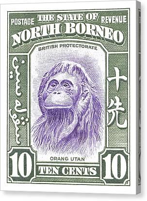 1939 North Borneo Orangutan Stamp Canvas Print by Retro Graphics