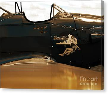 1943 Fairchild Pt -19a Canvas Print by Steven Digman