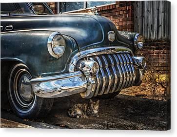 1950 Buick Dynaflow Canvas Print by Debra and Dave Vanderlaan