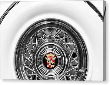 1954 Cadillac Eldorado Canvas Print by Tim Gainey