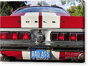 1968 Bad Ass Shelby Mustang Canvas Print by David Lee Thompson