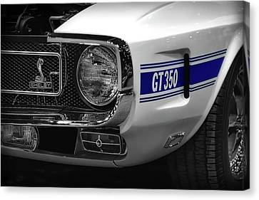 1969 Ford Mustang Shelby Gt350 1970 Canvas Print